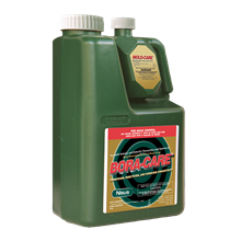 Picture of Bora-Care with Mold-Care (2 x 1 gal. bottle)