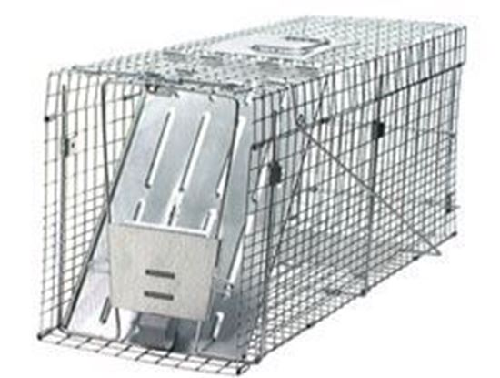 Picture of Havahart Trap #1089 (32x10.5x12.5)