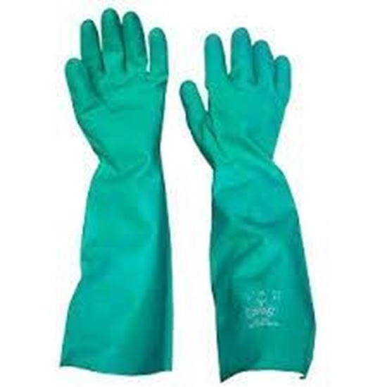 Picture of Gloves,Nitrile Elbow Length