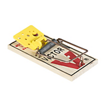 Picture of Victor M325 Mouse Trap (1 count)