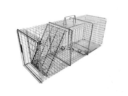 Picture of Tomahawk Pro Raccoon Trap with One Trap Door (32-in. x 10-in. x 12-in.)