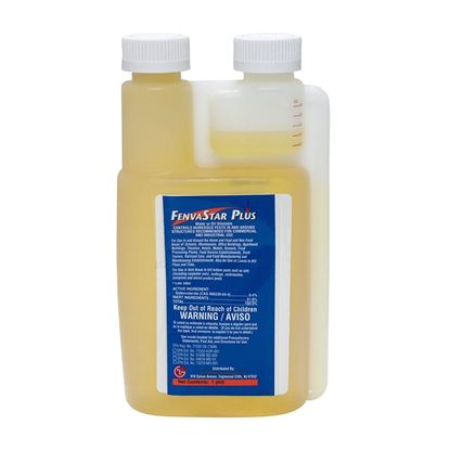 Picture of FenvaStar Plus