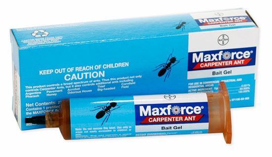 Picture of Maxforce Carpenter Ant Bait Gel