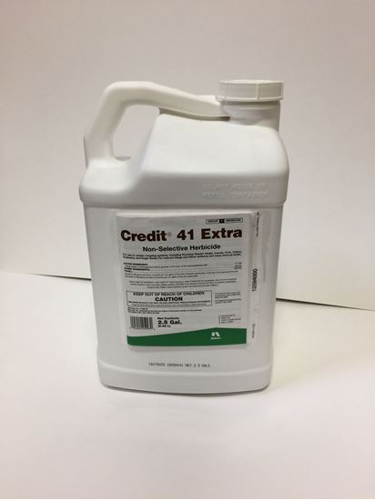 Picture of Credit 41 Extra