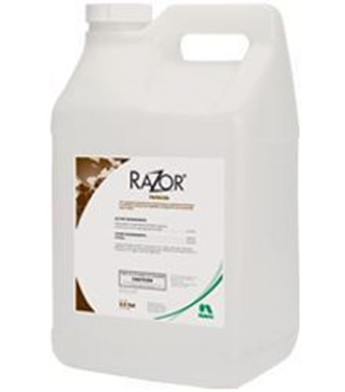 Picture of Razor
