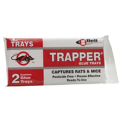 Picture of TRAPPER Glue Boards for Rats