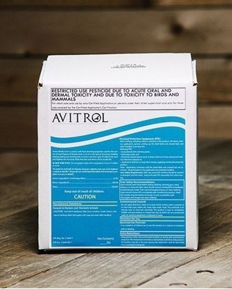 Picture of Avitrol Double Strength Whole Corn (4 x 5-lb. box)