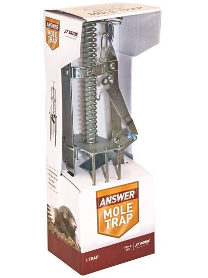 Picture of Answer Mechanical Mole Trap