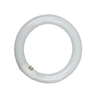 Picture of Synergetic Circline Bulb - 22 watt