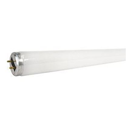Picture of Gilbert F40/T12 Bulb - 40 watt, 48-in.