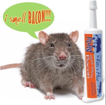 Picture of Pro-Pest Rat & Mouse Lure Bacon (32cc syringe)