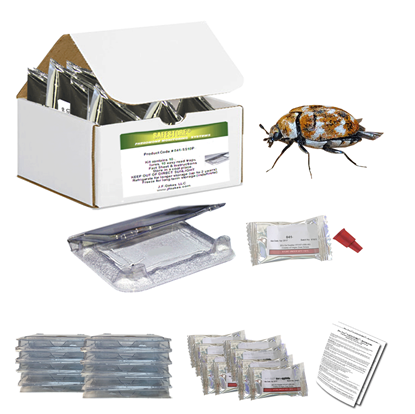 Picture of Pro-Pest Safestore Kit - Varied Carpet Beetle