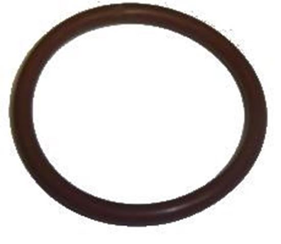 Picture of Actisol O-Ring for Tank Cap