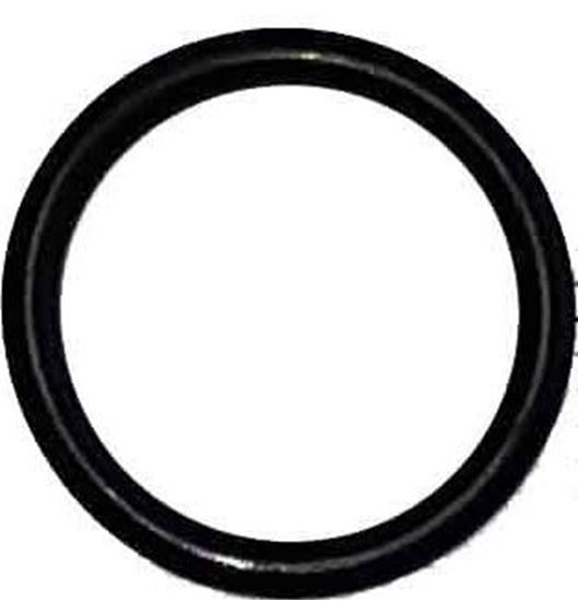 Picture of 9910-D30 Series Diaphragm Pump - O Ring for 2 in. Barb and Seal Cover