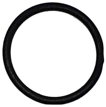 Picture of 9910-D30/D50 Series Diaphragm Pump - Gasket Seal O Ring