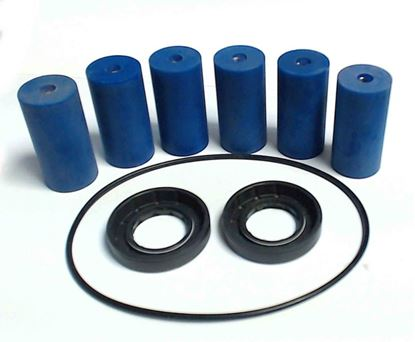 Picture of 1700 Series 5 Roller Pump - Repair Kit