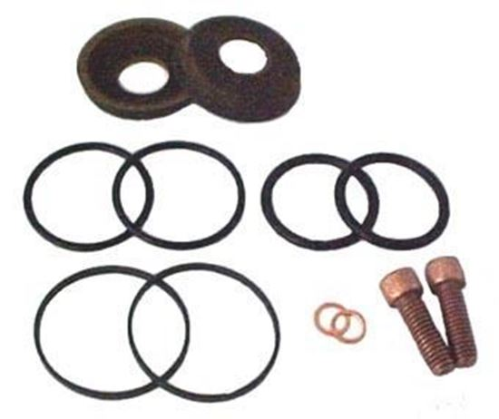 Picture of 5210C Series Big Twin Piston Pump - Repair Kit (Leather)