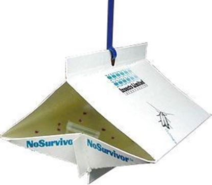 Picture of NoSurvivor Traps for Cigarette Beetles (10 count)