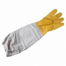 Picture of Bee Plastic & Canvas Gloves (X-Large)